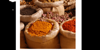 Travel through the spices